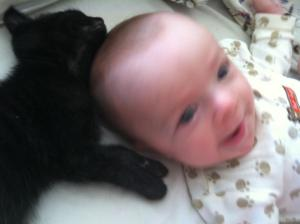 Babies and kittens... I mean, C'mon!