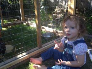 Bronte is a firm believer in chicken literacy.