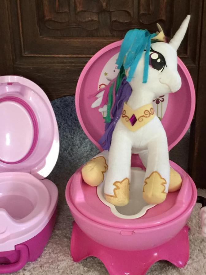 Poop Warfare: The Continuing Potty-Training Saga
