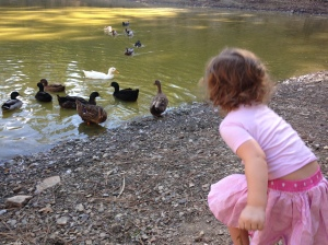 This photo symbolizes the importance of experience and outside play over having stuff (okay, not really. It's a cute photo of my daughter feeding ducks).
