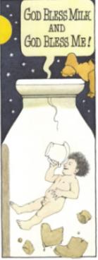 Night Kitchen milk